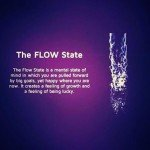 The flow state